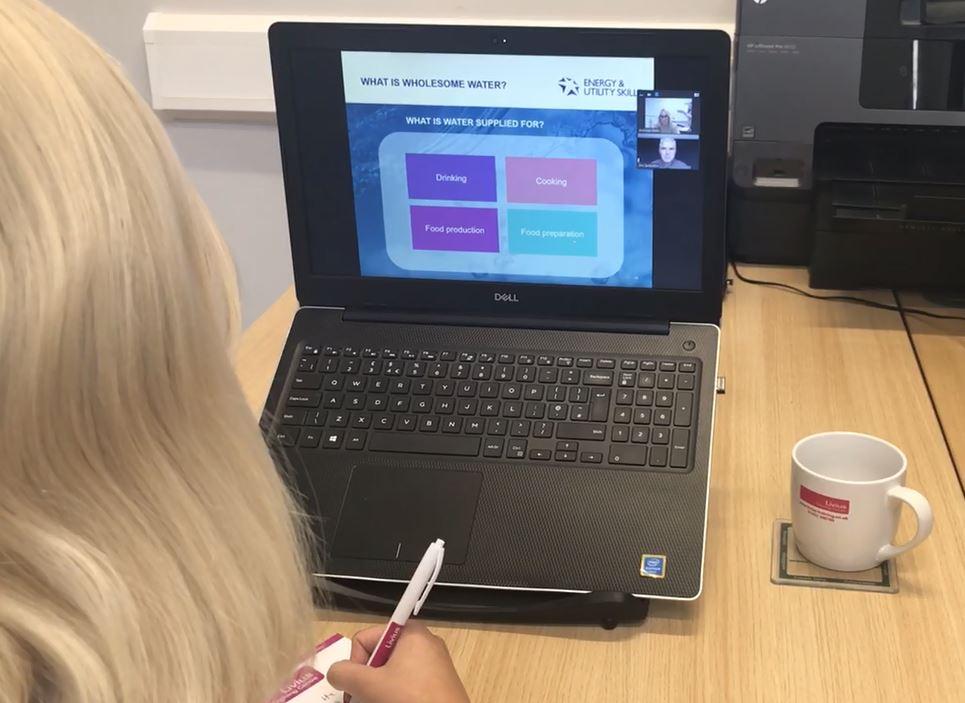 virtual courses, online EUSR